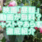 上戸彩の映画「昼顔」見逃し動画を今すぐ無料視聴!キャストやあらすじを徹底紹介!