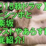 【2018年秋ドラマ】相葉雅紀「僕とシッポと神楽坂」キャストやあらすじを紹介!