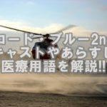 【山下&ガッキー】コードブルー2rdキャストやあらすじを紹介!!医療用語をかんたん解説!