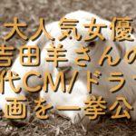 【人気女優】実力派「吉田羊」の歴代CMやドラマや映画の一覧アレコレ!