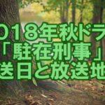 【2018年秋ドラマ】寺島進「駐在刑事」の放送日と放送地域は?