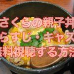 2019冬ドラマ「さくらの親子丼2」見逃した!無料視聴方法やあらすじキャスト紹介