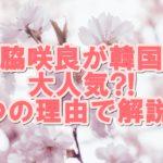 宮脇咲良が韓国で大人気!?3つのポイントで解説!!