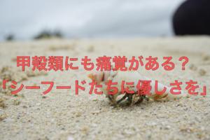 甲殻痛サムネ
